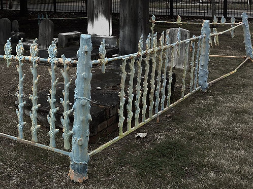 Tombstone plot and the Silver Wrought Iron Fence