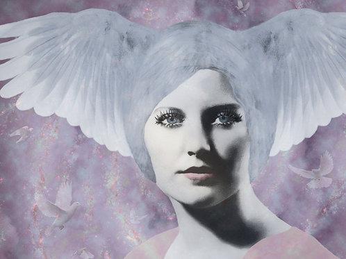 On Fairy Wings