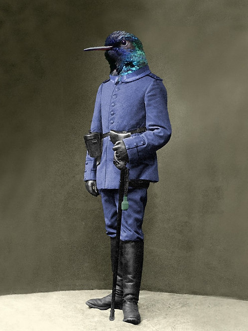 Victorian Paris Policeman in Hummingbird art Portrait