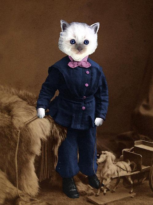 Photograph art of Siamese Kitten as Victorian Boy