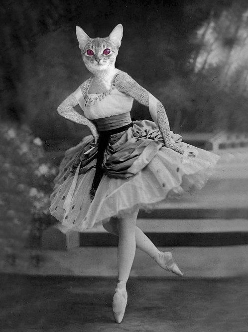 Grey Tabby Cat as Victorian Ballerina