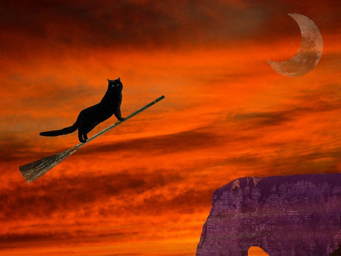Black Witch Cat on a Broom