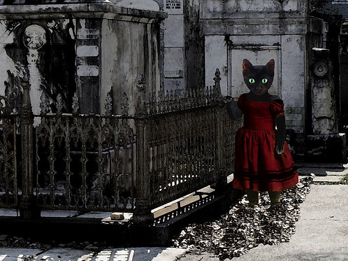 Black Cat Voodoo Familiar in the New Orleans Graveyard