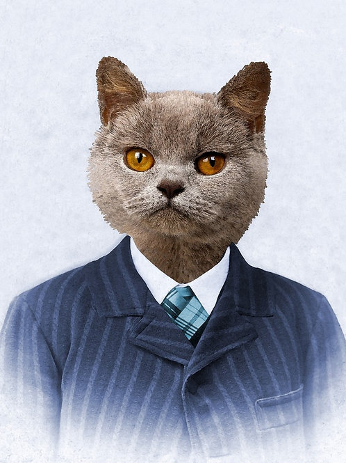 Russian Blue Cat in a Pin Stripe Suit portrait photograph