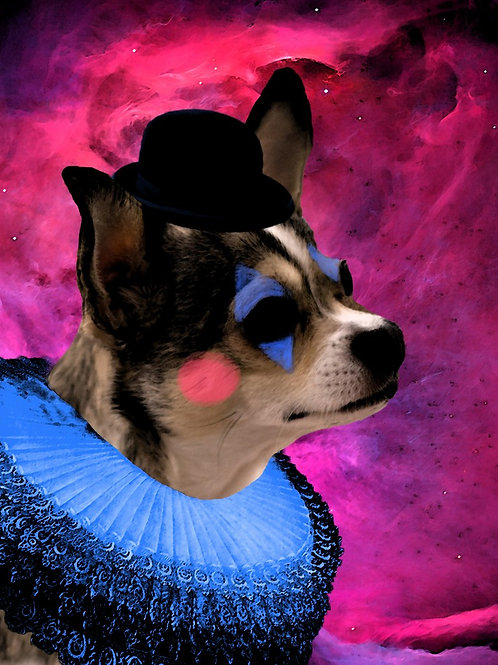 Altered Chihuahua photograph art as best dog Jester in space
