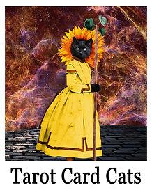 tarot cats.jpg