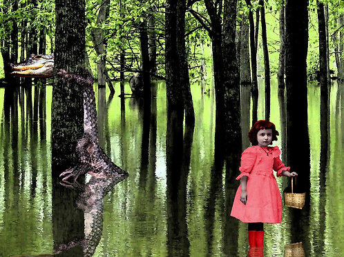 Little Red Riding Hood meets the Big Bad Alligator