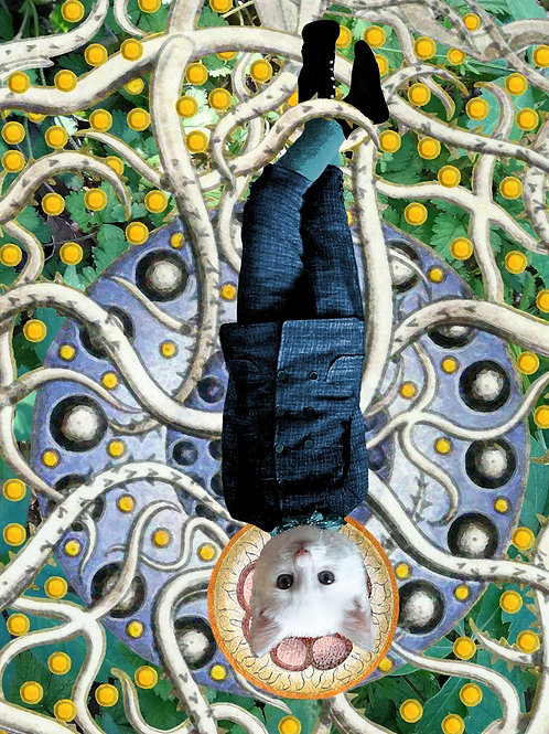 The Hanged Man Tarot