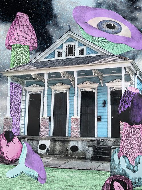 New Orleans Wonderland