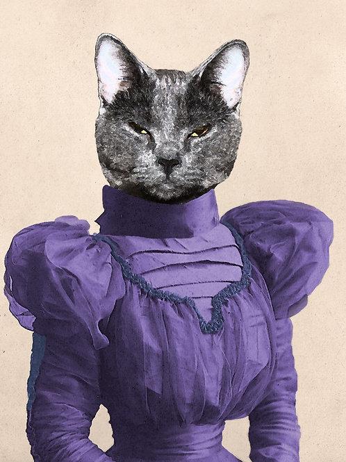Art Photograph of a Russian Blue Cat