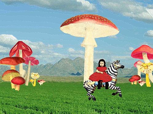 Carousel Zebra runs away in a Merry Go Round Wonderland