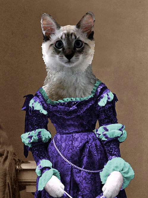 Custom Renaissance Portrait of a pet Siamese Cat