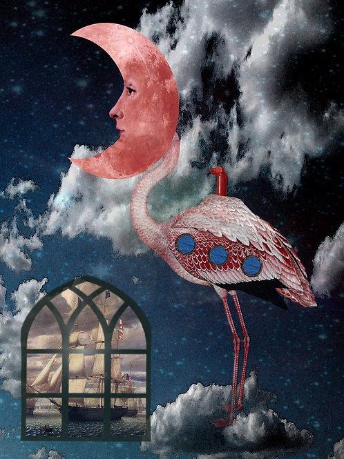 Flamingo Moon and Submarine Surrealism