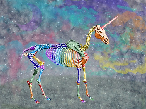 Rainbow Unicorn Skeleton