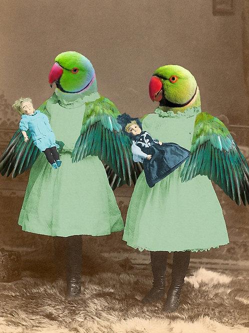 Pet Portrait of two Parakeet Sisters