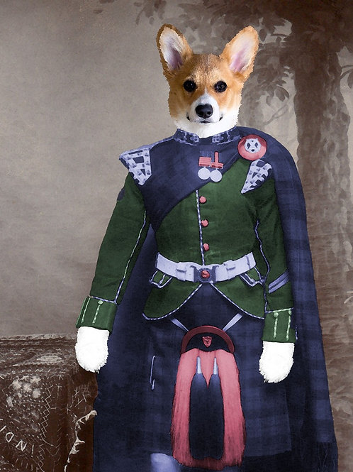 Pembroke Welsh Corgi in Scottish kilt