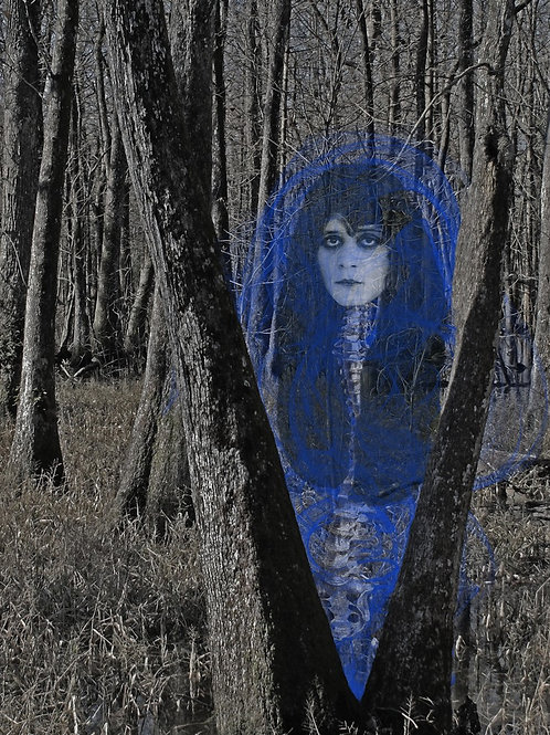 Vamp Fifolet Ghost in the Louisiana Swamp