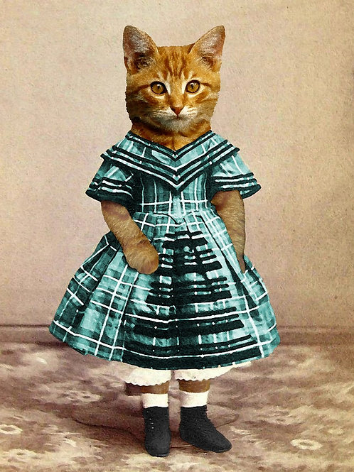 Portrait art of a Ginger Kitten from Photograph