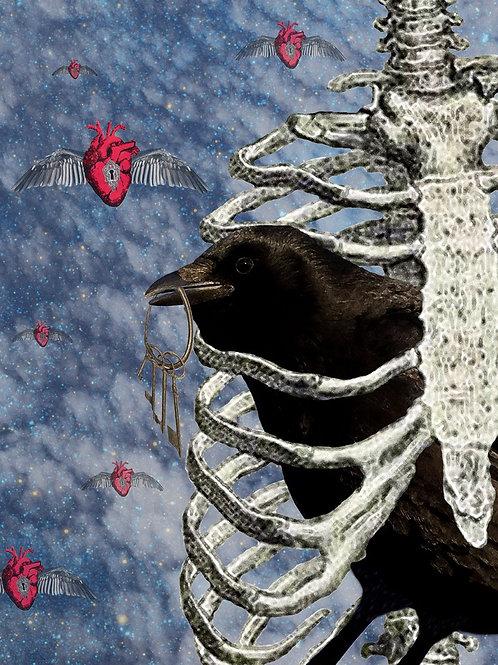 Raven Caged as True Love flies