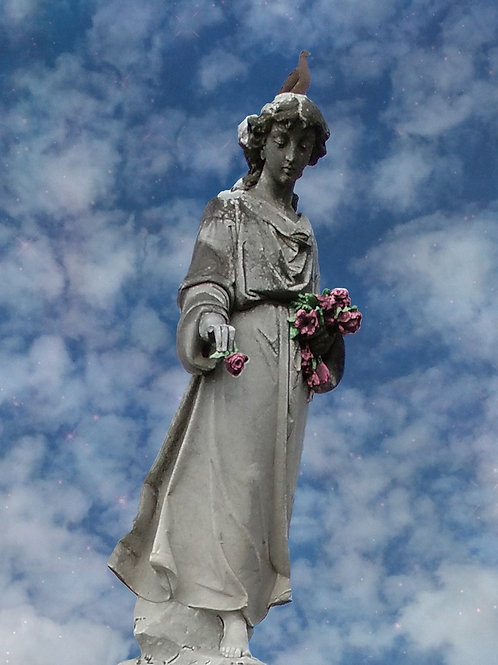 Cypress Grove Angel with Graveyard Roses and Dove of Peace