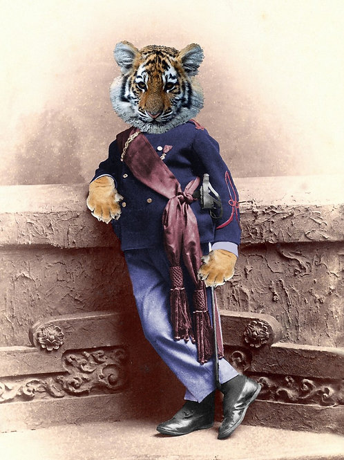 Tiger Cub Soldier Boy at Rest