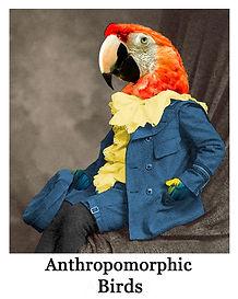 anthro birds.jpg