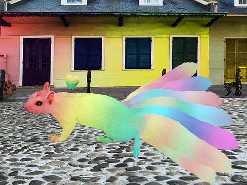 Rainbow Squirrel camouflaged in the French Quarter