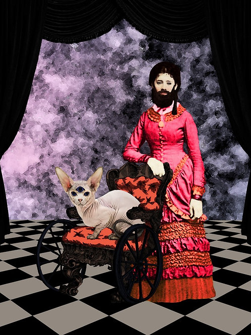 The Bearded Lady and her Hairless Kitty