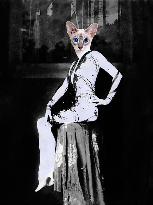 Ziegfeld Follies Siamese Kitty Cat as anthro pin up girl
