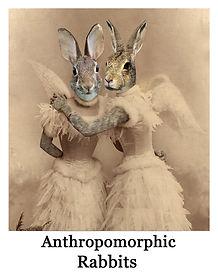 anthro rabbits.jpg
