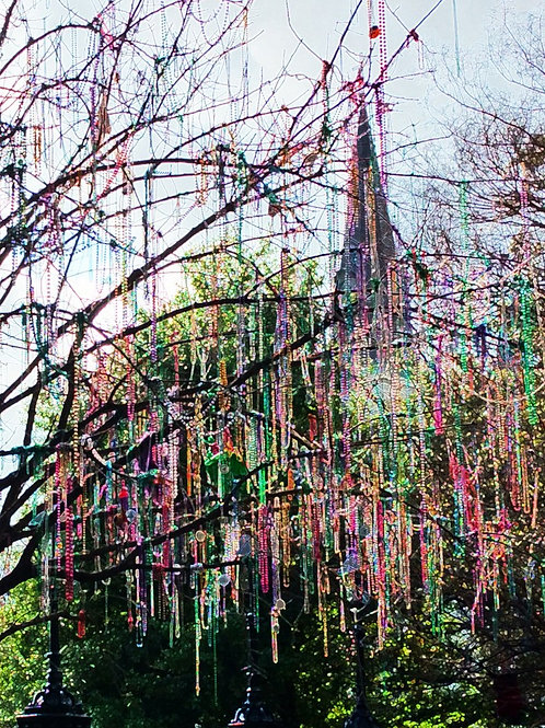 Mardi Gras Tree in Jackson Square by St Louis Cathedral
