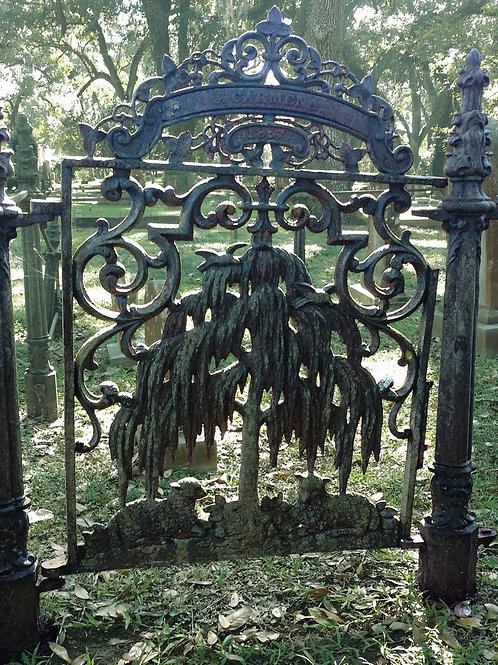 Weeping Willow Gate to the Spirit World