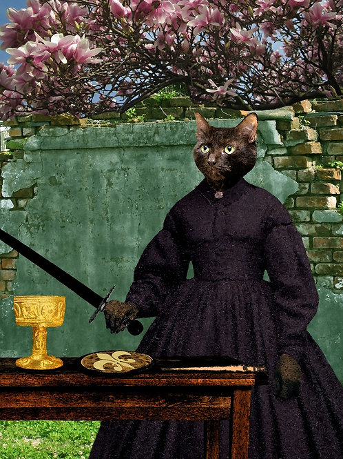 Black Cat Magician Tarot Card