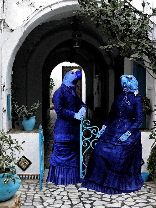 Victorian Macaw Parrot Sisters as Photograph art