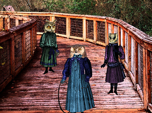 Victorian art anthro OWL GIRLS with Hoops and Sticks
