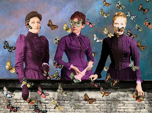 Speak No Evil butterfly surrealism
