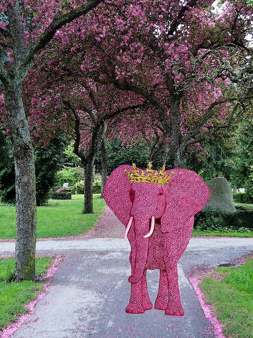 Elephant Princess and the Cherry Blossom Landscape