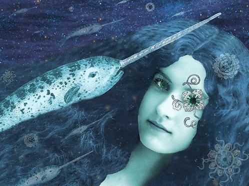 Because Narwhals love Mermaids