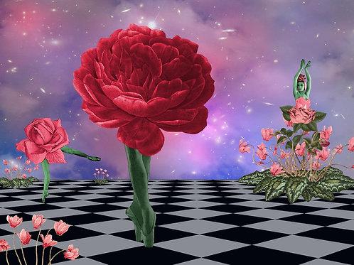 Red Rose Ballerina dances Surreal Ballet