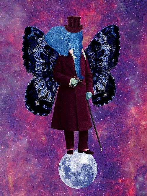 When Steampunk Butterfly meets Blue Elephant