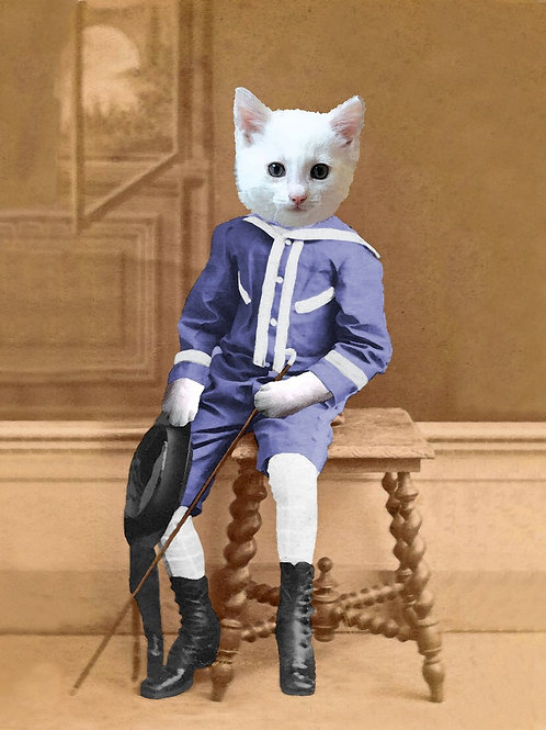 White Kitten Sailor Boy pet art from Photograph