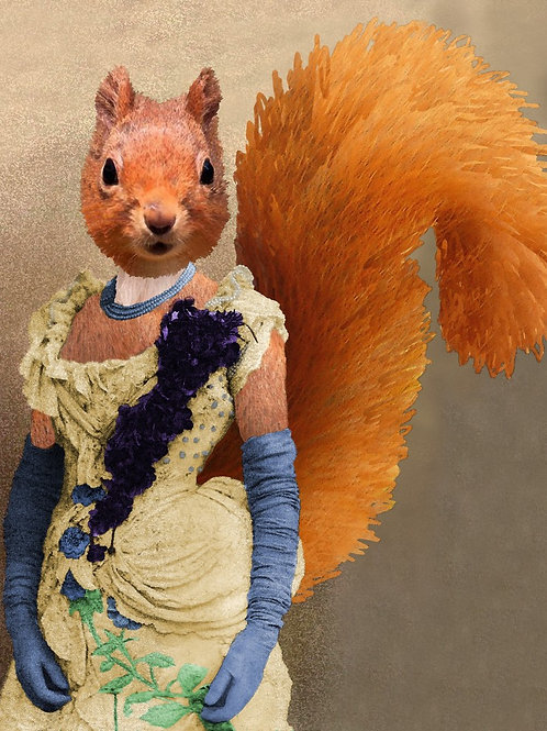 Portrait of a Red Lady Squirrel from Victorian Photograph