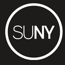 SUNY Oneonta Summer Research Fellowship