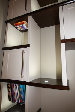 Lighted Bookcase