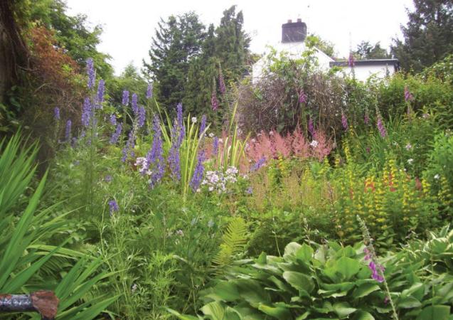 Rockfort Mrs Jessie Mahaffy's Garden