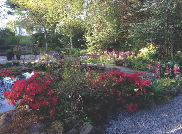 Granny Garden