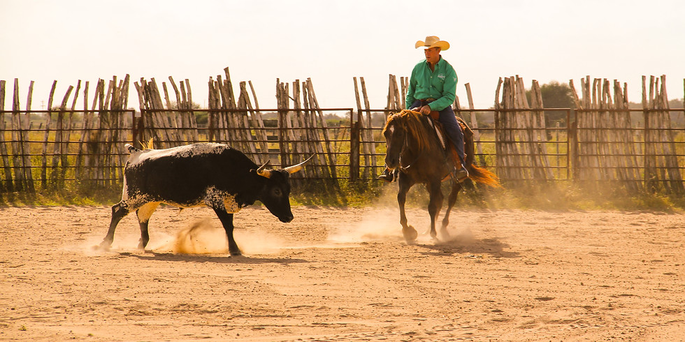 Van Hargis Ranch Horse Versatility Clinic