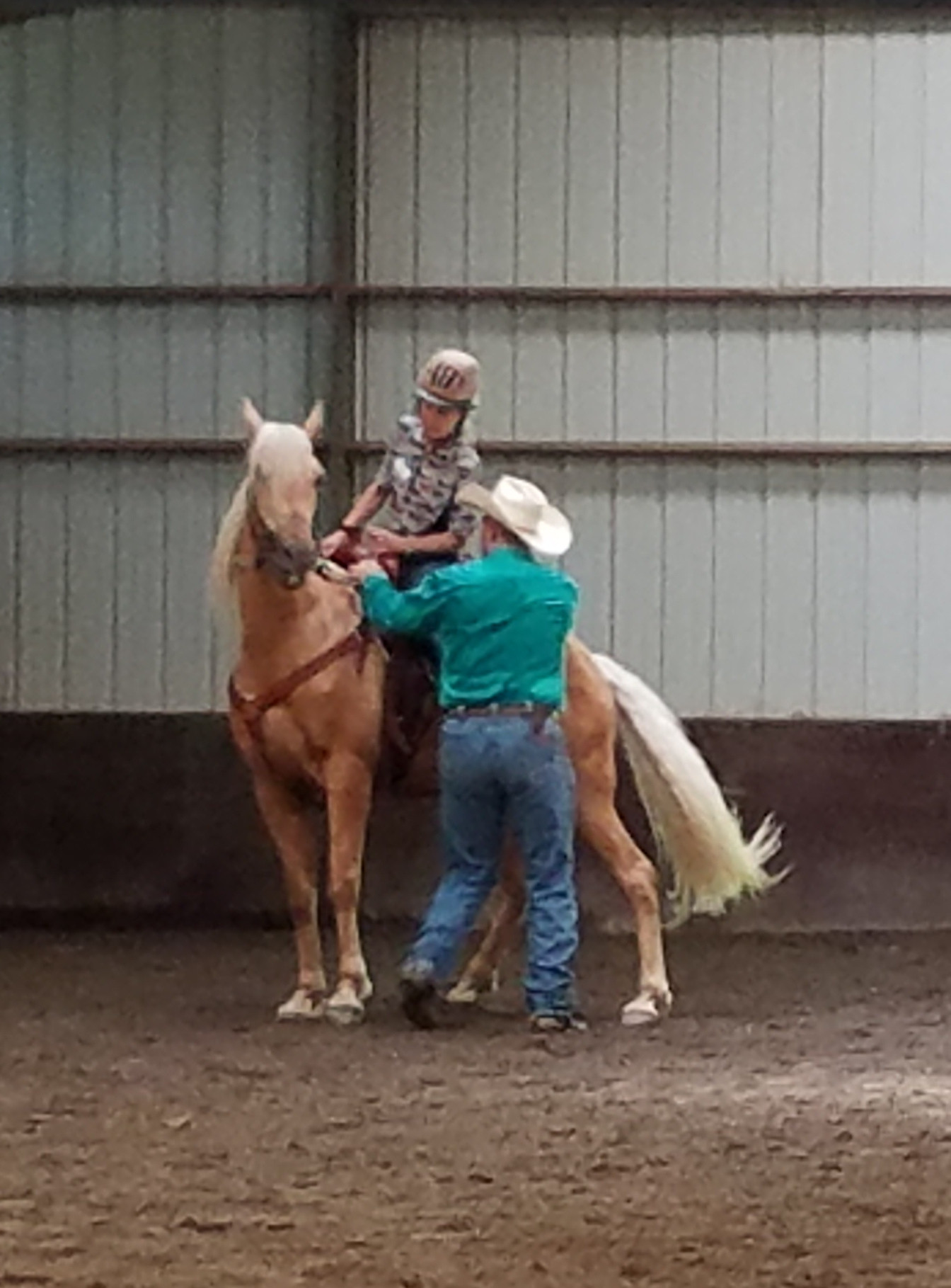 Hourly Lessons with our horse