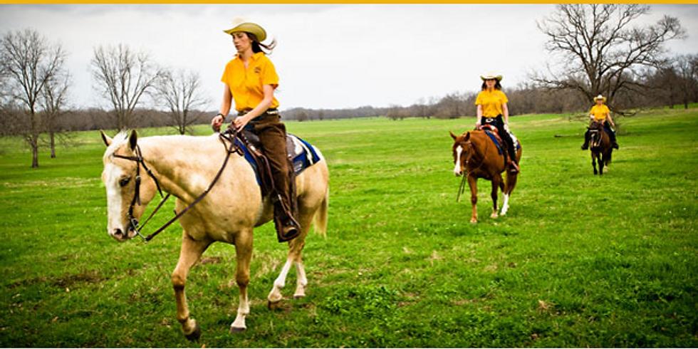 Van Hargis General Horsemanship Clinic to benefit Texas A&M Commerce Equine Program (1)
