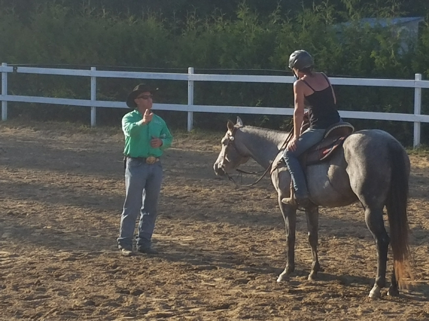 Hourly Lessons with your horse